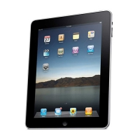 iPad 16 GB Wifi